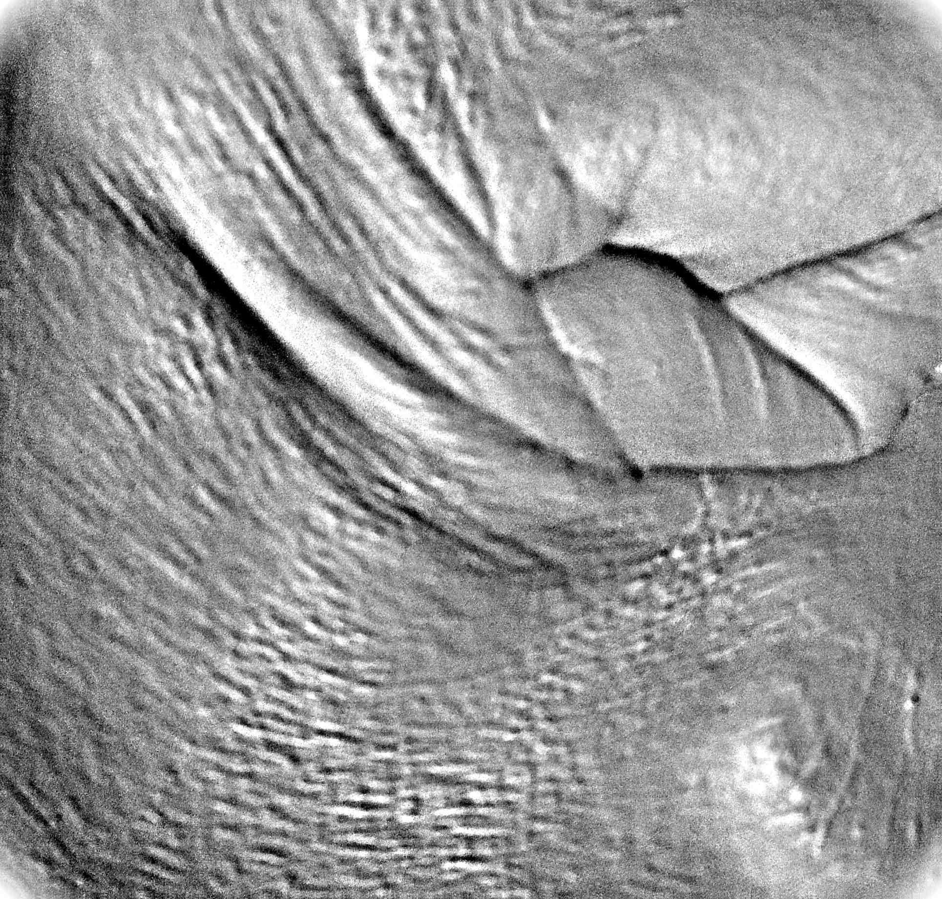 Copy of fist heart